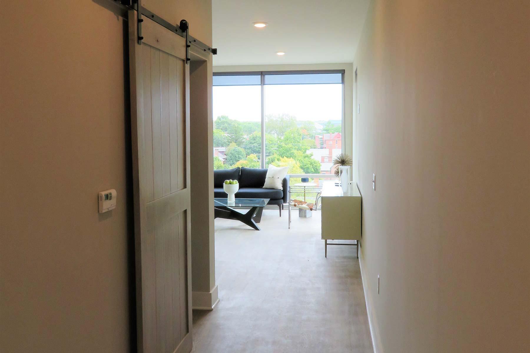 Apartment hallway and bedroom barn door